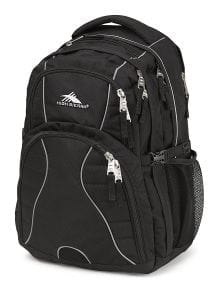 High Sierra Swerve Laptop Backpack