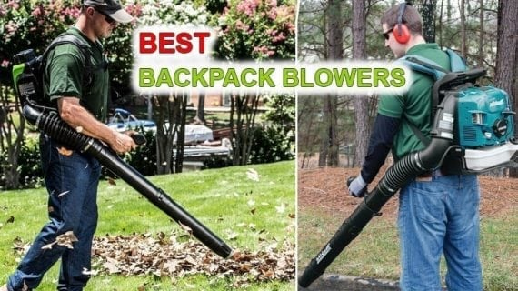 Best backpack blowers