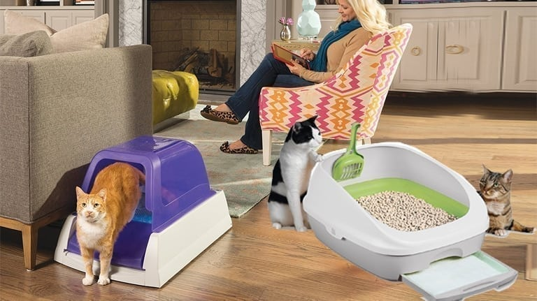 image of best self-cleaning litter box