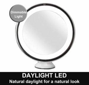 Fancii Daylight LED 10X Magnifying Makeup Mirror