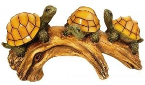 Outdoor Turtles on a Log