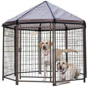 Advantek Pet Outdoor Dog Kennel