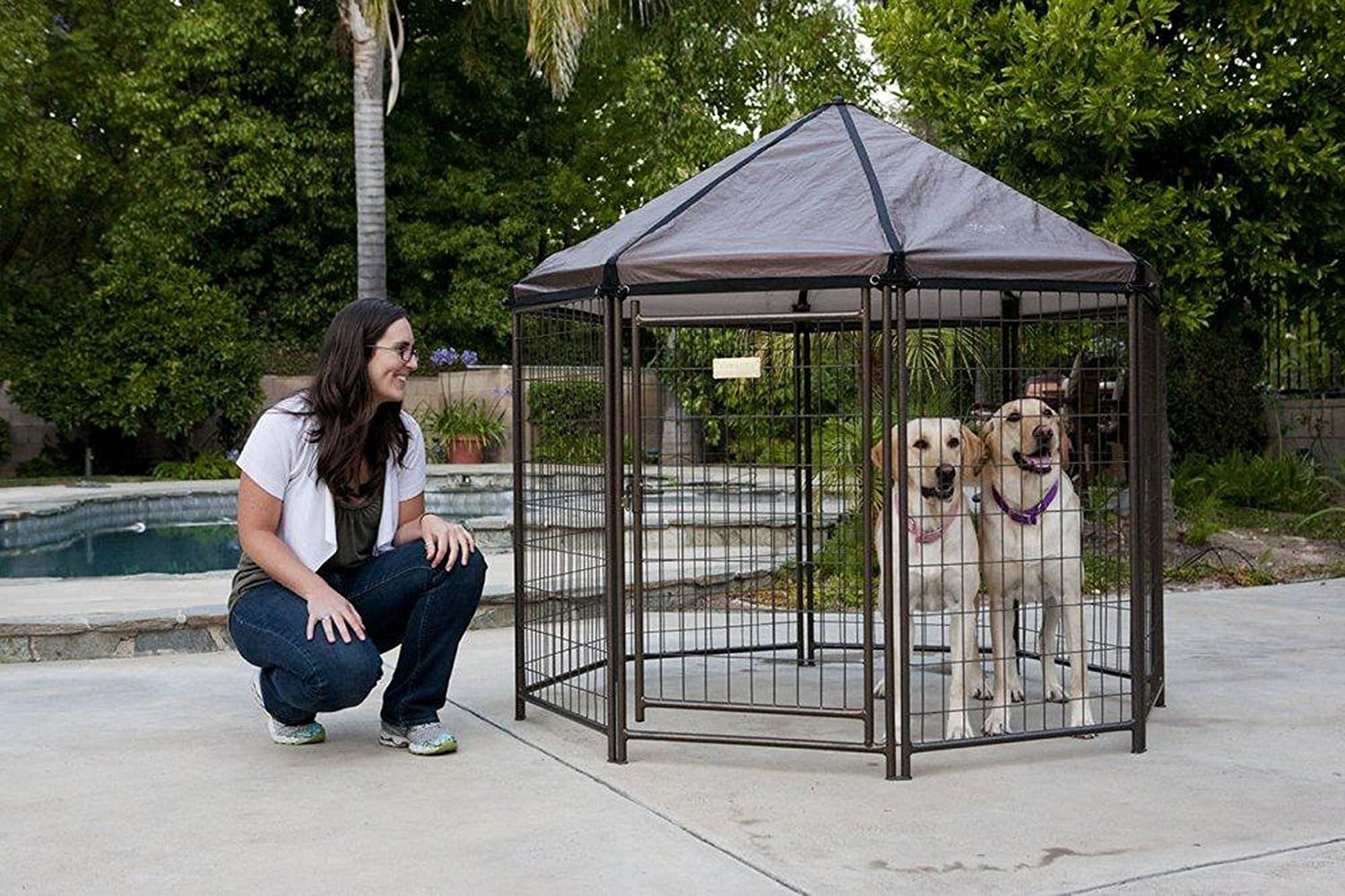 Best outdoor dog kennels