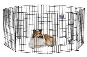 MidWest Pets Foldable Metal Exercise Pet Playpen