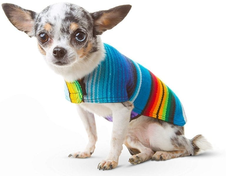 Baja Ponchos Dog Sweater